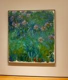 Miasto Nowy Jork MOMA agapant - Claude Monet - Obraz Stock
