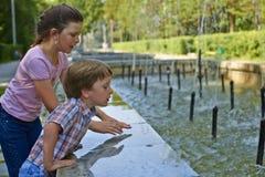 Miasto ogród Obrazy Royalty Free