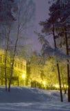 Miasto park na zima wieczór Zdjęcie Royalty Free