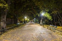 Miasto park nocą Zdjęcia Royalty Free