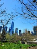Miasto park obramiający fotografia stock