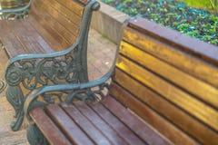 Miasto Parkowe ławki pod ranku światłem słonecznym fotografia royalty free