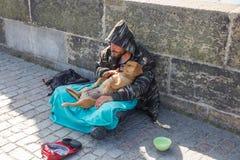 Miasto Praga, republika czech Na ulicie żebrak z pies fundami zaludnia dla pieniądze 2019 24 fartuch zdjęcia royalty free