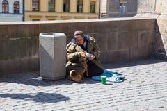 Miasto Praga, republika czech Na ulicie ?ebrak z pies fundami zaludnia dla pieni?dze 2019 24 fartuch zdjęcie stock