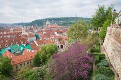 Miasto Praga, republika czech Miasto od wzg?rza, dom?w, roffs i ulic, 2019 24 fartuch zdjęcie royalty free