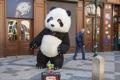 Miasto Praga, republika czech Uliczny artysta ubiera w górę niedźwiadkowego kostiumu wewnątrz i tanczy na ulicie 2019 24 fartuch fotografia stock