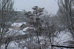 Miasto przychodził zimę Ulicy i drzewa zakrywający z śniegiem mróz Obraz Stock