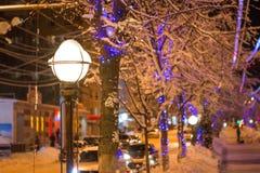 Miasto przygotowywa dla nowego roku i rozgałęzia się - światło girlandy w śniegu fotografia stock