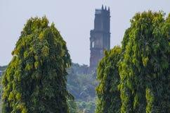 Miasto Stary Goa India Zdjęcie Royalty Free
