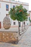 Miasto sztuka Palma Zdjęcie Stock