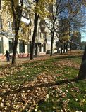 Miasto uliczni budynki chodzi ludzi liść trawy obraz stock