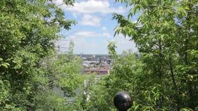 Miasto widok przez drzew zbiory
