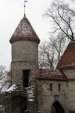 Miasto widoki Tallinn Fotografia Stock