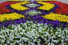 Miasto wystawa floriculture ` Flora-2018 ` Zdjęcia Stock
