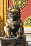 miasto zakazująca lwica Fotografia Stock