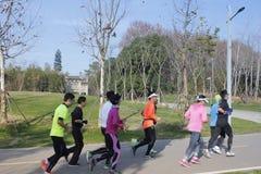 Miasto zieleni sposób z wiele biegaczami w pogodnym popołudniu Fotografia Royalty Free