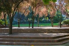 Miastowa parka i miasta przestrzeń Zdjęcie Stock
