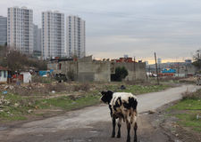 Miastowi transformacja ślada obraz stock