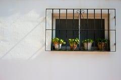 Miastowy domowy façade fotografia royalty free