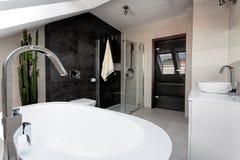 Miastowy mieszkanie - łazienki wnętrze obrazy stock