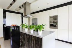 Miastowy mieszkanie - Jaskrawa kuchnia zdjęcie stock