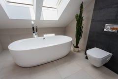 Miastowy mieszkanie - luksusowa łazienka obrazy stock