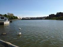 Miastowy morze Fotografia Royalty Free