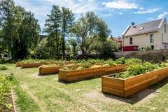 Miastowy ogród w mieście Bayreuth obrazy stock