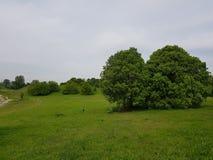 miastowy park w Cernusco zdjęcie stock