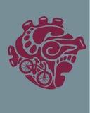 Miastowy serce ilustracji