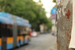 Miastowy widok Elektryczny filaru przedpole Sofia Bułgaria i tramwaju transportu publicznego tła miasto fotografia royalty free