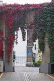 Miauczenia archway w Londyn z liśćmi czerwieni w jesieni Zdjęcie Royalty Free