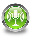 Mic icon glossy green round button Royalty Free Stock Image