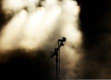Mic preto e luzes douradas Fotografia de Stock