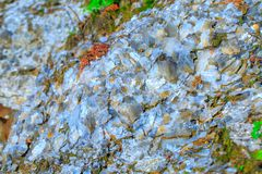 The mica sheets and quartz silicate minerals. Bare geological ro stock image
