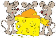 Mice And Cheese Royalty Free Stock Photos