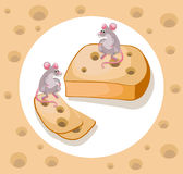 Mice cheddar cheese Vector funny cartoon caracter template illustration Royalty Free Stock Image