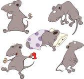 Mice.Collection.集合 免版税库存图片