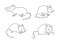 Mice in contours - vector illustration Stock Photo