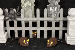 Mice in Graveyard Stock Image