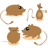 Mice on the isolated background Stock Images