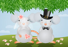Mice married Royalty Free Stock Image