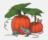 Mice Playing In Pumpkin Patch: Color Pencil Art. Color Pencil drawing of three mice playing around some pumpkins Stock Image