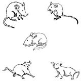 Mice. A sketch by hand. Pencil drawing Stock Photo