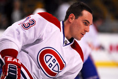 Michael Cammalleri Montreal Canadiens Royalty Free Stock Image