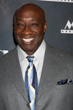Michael Clarke Duncan Royalty Free Stock Image