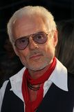 Michael Des Barres Royalty Free Stock Photography