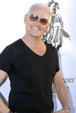 Michael Des Barres on the red carpet Royalty Free Stock Photography