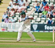 Michael Hussey Stock Images