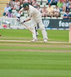 Michael Hussey Royalty Free Stock Photography